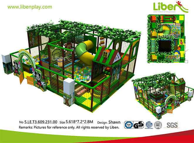 5.LE.T3.609.231.00 China Small Indoor Jungle Gym Supplier (5)